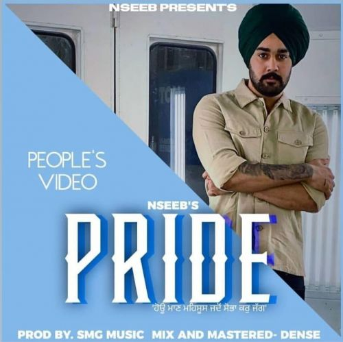 Download Pride Nseeb mp3 song, Pride Nseeb full album download
