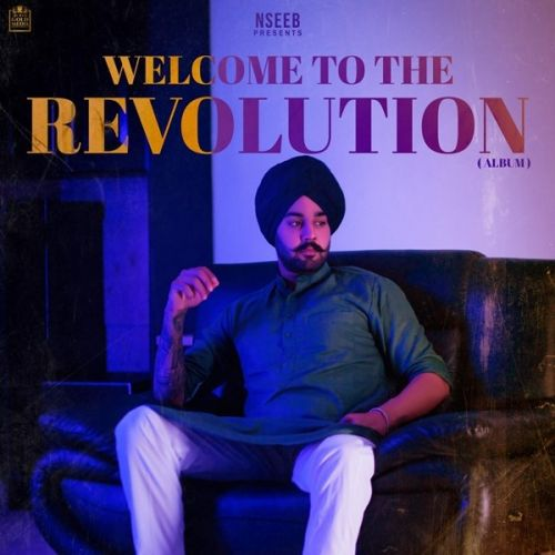 Download Munde Desi Nseeb mp3 song, Welcome To The Revolution Nseeb full album download