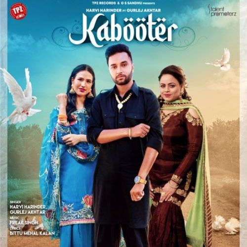 Download Kabooter Harvi Harinder, Gurlez Akhtar mp3 song, Kabooter Harvi Harinder, Gurlez Akhtar full album download