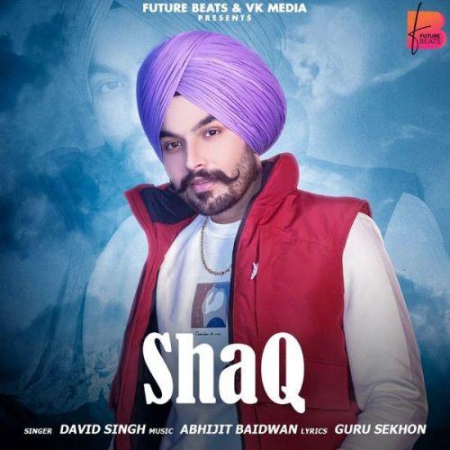 David Singh mp3 songs download,David Singh Albums and top 20 songs download