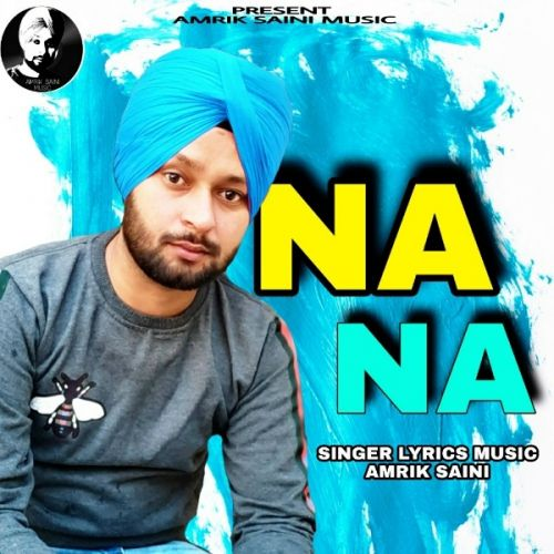 Download Na Na Amrik Saini mp3 song, Na Na Amrik Saini full album download