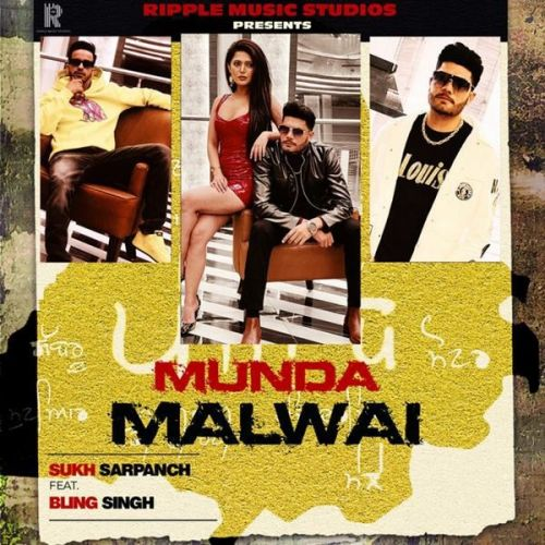 Bling Singh and Sukh Sarpanch mp3 songs download,Bling Singh and Sukh Sarpanch Albums and top 20 songs download